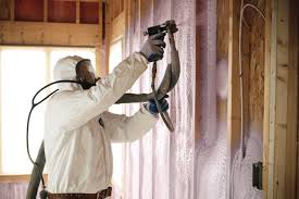 spray foam insulation sunlight contractors mold remediation and damage repair