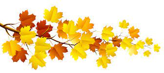 Branch with Autumn Leaves PNG Clipart | Fall clip art, Autumn painting, Leaf clipart