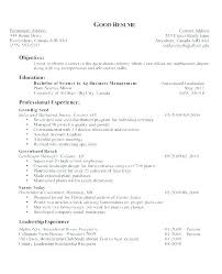 Resume Opening Statement Classy Opening Resume Statement Examples Colbroco