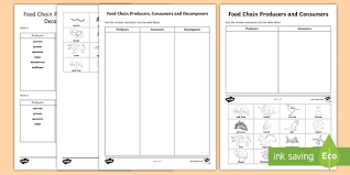 Producer And Consumer Venn Diagram Food Chain Producers Consumers And Decomposers Sorting