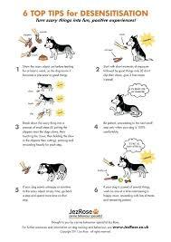 Great Ideas Dog Paw Reflexology Chart Dog Training