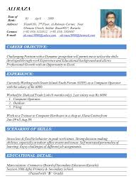 Best Sample Resume Format Collection Creative Sample Resume Format