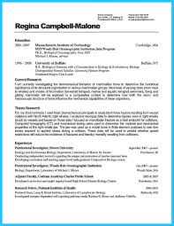 Database Developer Sample Resume Database Developer Resume Savebtsaco 12