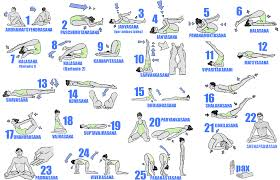 diffe types of yoga with their purpose and benefits hatha yoga postures