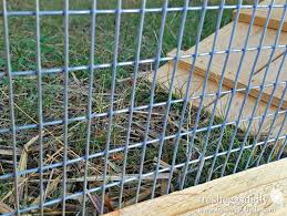 electric fence for garden. Choosing The Right Fencing For Your Chicken Coop, Run Or Garden | Fresh Eggs Daily® Electric Fence N