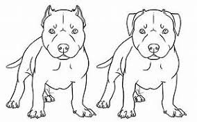 Images Of Simple Pitbull Dog Drawing Golfclub