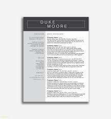 Executive Resume Templates Best Of 20 Executive Hybrid Resume