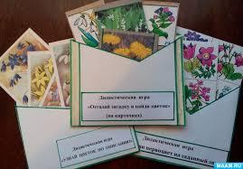 Дидактические игры по первоцветам Воспитателям детских садов  Дидактические игры по первоцветам