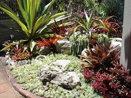 Small Picture 30 unique Cactus Green Garden Design Living ArtVertical