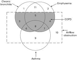 Figure 2 Thorax