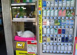 Crazy Vending Machines In Tokyo Inspiration Morioka One Of Japan's Longest Running Blogs Maneki Neko