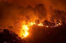 Bushfire tracking with Sentinel Hotspots - CSIRO
