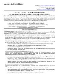 Pre Sales Consultant Resume Example Great Resumes Samples