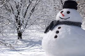 It's World Snowman Day! (How many more will there be?) - Sustrana