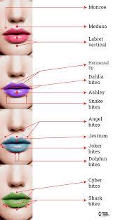 Imágenes De Piercing En El Labio Inferior Y Superior Y Sus Nombres