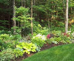 Small Picture Woodland edge garden design Like the distinct separation between