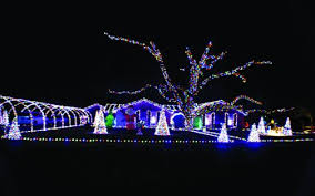 a christmas lights tour for the whole