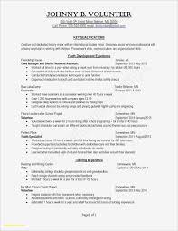 Free Printable Resume Templates Blank Valid Word Format Resume Free