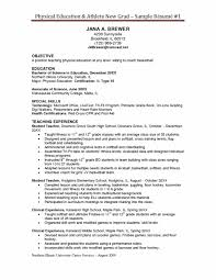 Coaching Resume Samples Hockey Coach Resume Examples Iceample Coachingamples Example Player 30
