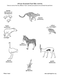 food chain coloring page pretty coloring food chain coloring page coloring pages for girls food chain coloring page 29969 adjanass creations com on food web worksheet pdf