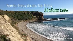 Rancho Palos Verdes Tide Pools Abalone Cove