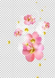 Pink Desktop Flower Color Png Clipart Blossom Chart