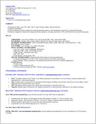 Xml Resume Example Simply Resume Xml Template 24 Resume Ideas 1