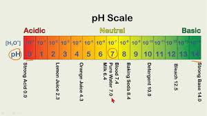 Ph Level Chart Ph Balance