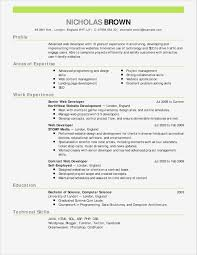 Beautiful Resume Template For Word Unique Resume Templates Word Best