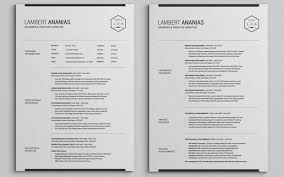 2 Pages Resume CV Pack