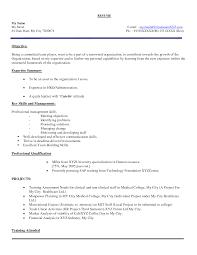 Sample Resume For Mba Freshers Resume Sample In Word Document Mba
