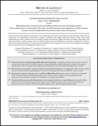 Resume Examples For Executives Magnificent CEO Resume Example Page 48 Resume Examples Pinterest Resume