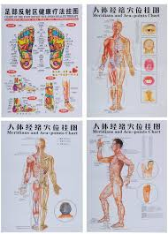 7pcs Set English Hand Foot Ear Body Meridian Points Of Human Wall Chart Female Male Acupuncture Massage Point Map Flipchart