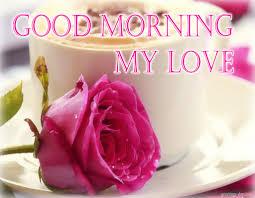 my love good morning wg01101