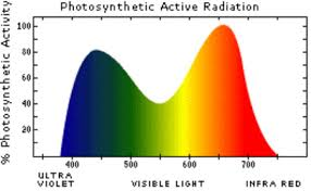 Full Spectrum Led Grow Lights Atop Horticulture Lighting