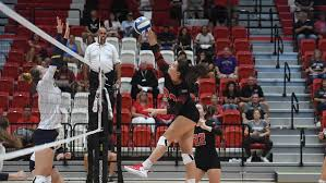 Sophie Rice - Women's Volleyball - Saint Francis University Athletics