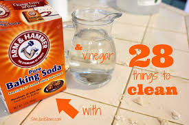28 Things to Clean With Baking Soda & Vinegar SheJustGlows.com