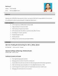 14 Elegant Pdf Resume Template Resume Sample Ideas Resume
