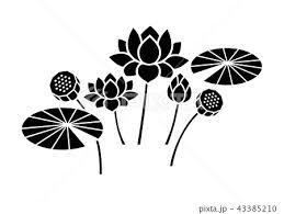 蓮の花 モノクロのイラスト素材 43385210 Pixta