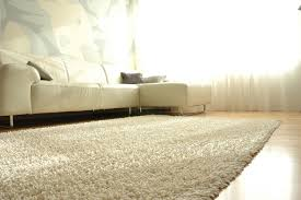 White Living Room Rug Living Room Shag Area Rugs With Grey Shag Area Rug Carpet And Art