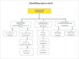 Non Profit Structure Organizational Chart Kozen