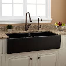 Drop In Farmhouse Kitchen Sink 39 Risinger Double Bowl Fireclay Farmhouse Sink Black Smooth