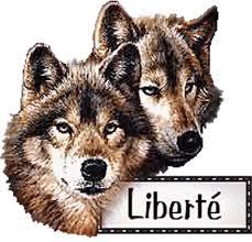 """Résultat de recherche d'images pour """"gifs chiens en liberté"""""""