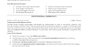 Examples Of Resume Profiles Sample Professional Resume Template