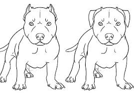 realistic puppy coloring pages. Brilliant Realistic Pitbull Coloring Pages Puppy Page  Download Realistic  For Realistic Puppy Coloring Pages