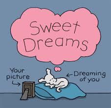 kitten good night animation sweet dreams love good night animation