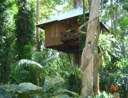 Our Jungle House Review U2013 Khao Sok Tree Houses U2013 Thailand Khao Sok Treehouse