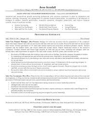 Tax Accountant Resume Berathen Com