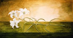steve greaves lily no 1 watercolour flower painting