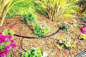 best garden sprinkler best garden sprinkler hose m drip irrigation for round lawn garden sprinkler system smart sprinkler spray small garden